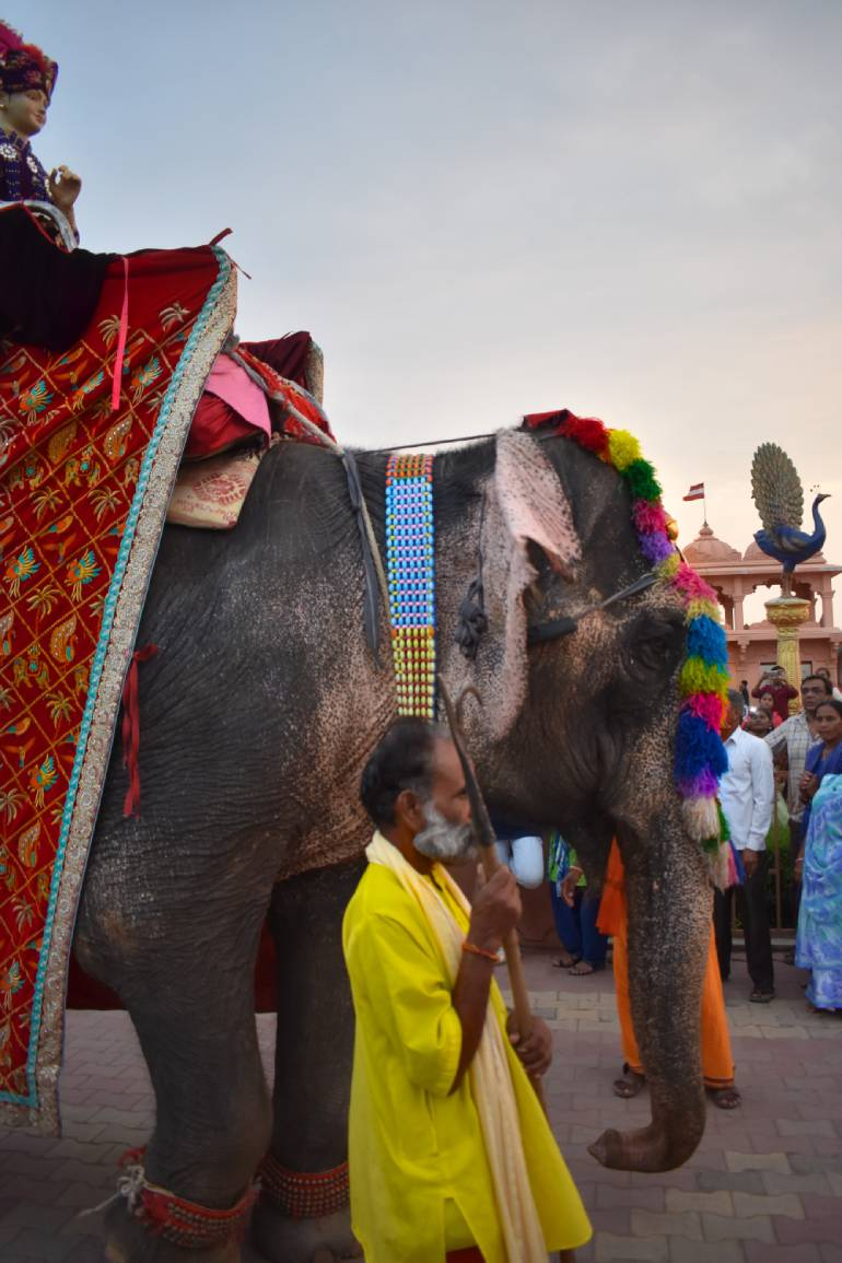 The most famous elephant of Rajpipla during the Ganesh parade